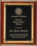 Rosewood Piano Finish Recognition Plaque Employee Awards