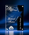 Star Cutout Clear and Black Acrylic Award Employee Awards