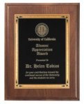 Walnut Step Edge Recognition Plaque Sales Awards