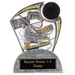 Large Spin Award Hockey Spin Resin Trophy Awards